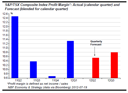 Profit Margin expectations