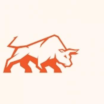 Loco Bull