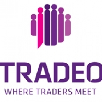 Making the most of the markets through Social Trading with Tradeo
