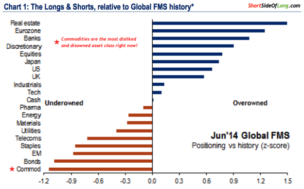 Merrill Lynch Money Manager Positioning